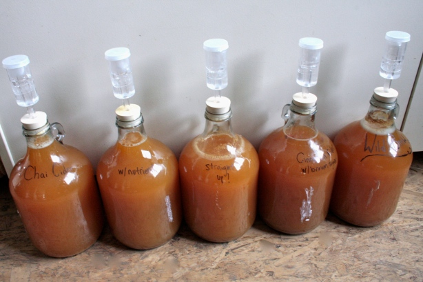 hard cider experiments